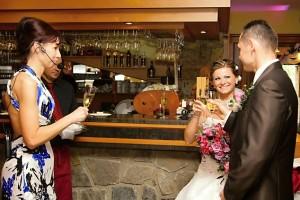 Svadobná koordinácia, uvítanie, príhovor, prípitok, animácie
