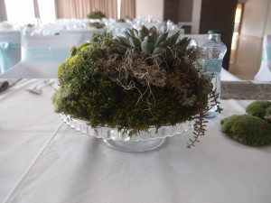 Svadba hotel Lučivná
